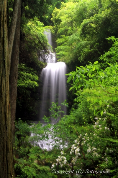 2011_滝