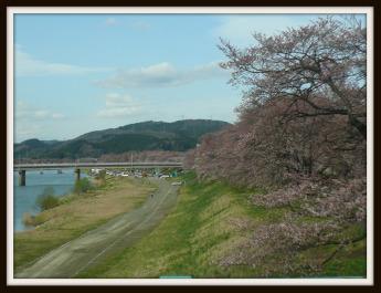 一目千本桜1