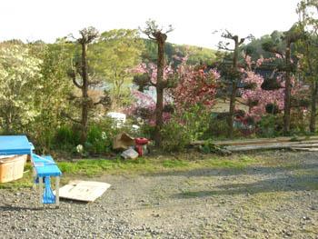 yasuragisou2