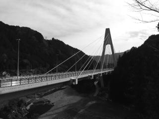 写真 5 (5)