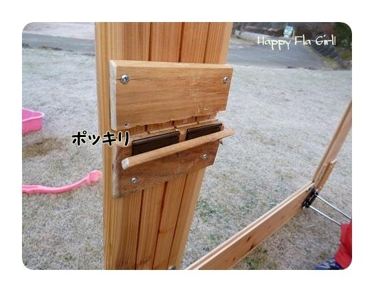 P1000080-1.jpg