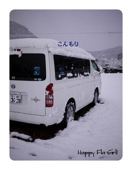 P1050505-1.jpg
