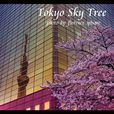 東京スカイツリー120402