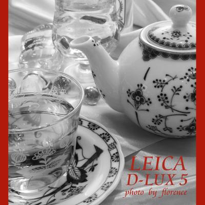 LEICA120402