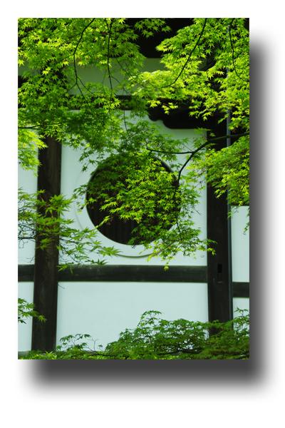 東福寺120409