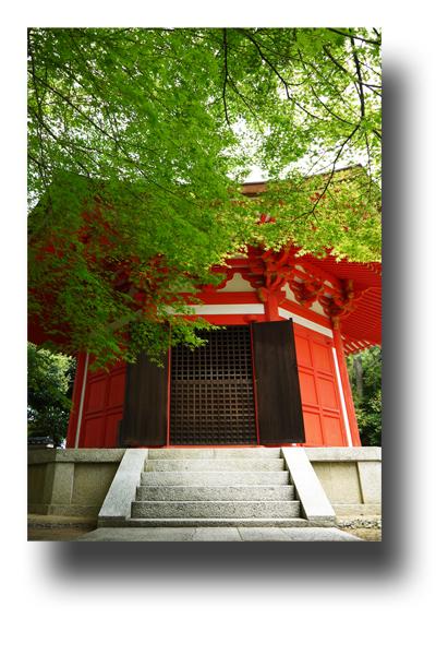 東福寺120410