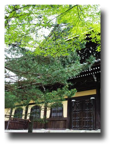 南禅寺120506