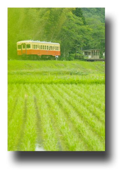 小湊鉄道120606