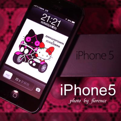 iPhone51210