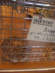 INDUSTRYパン