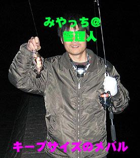 10050200301.jpg