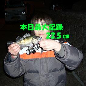 2010-3-13蒲刈 014-100007