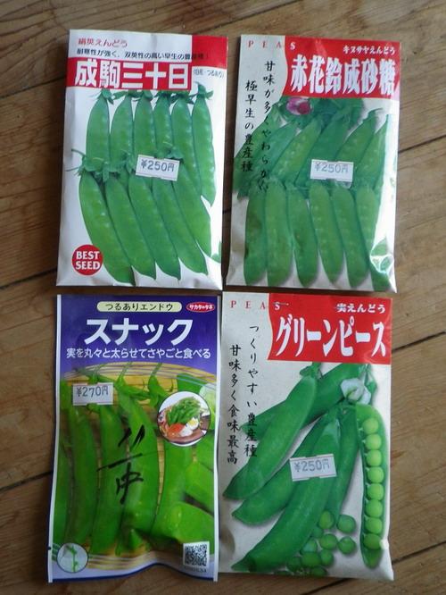 エンドウの種袋H26