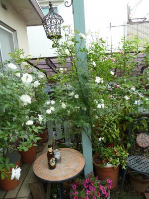 rosebia122.jpg