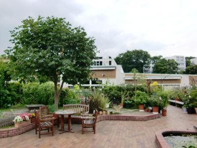 屋上ガーデン1
