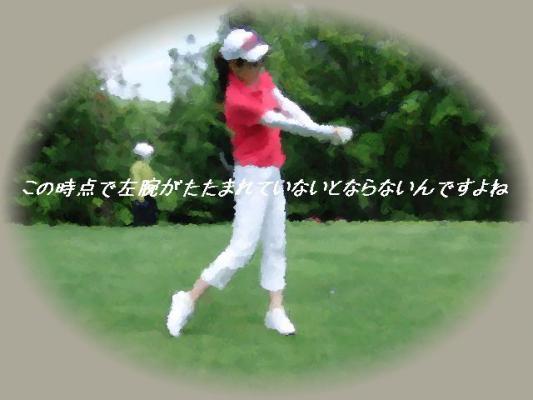 CIMG0137.jpg