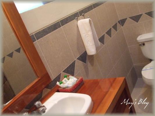 DSCF4244_20101024184101.jpg