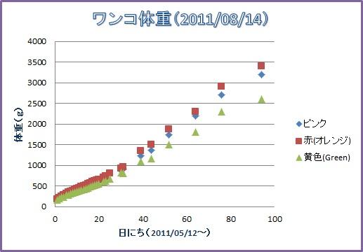 2011-08-14wanko.jpg