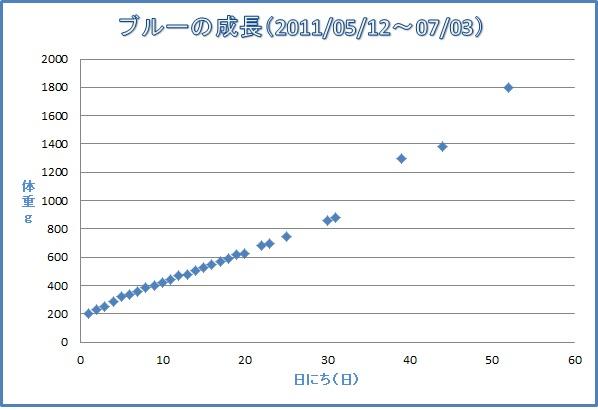 20110703Blue 成長