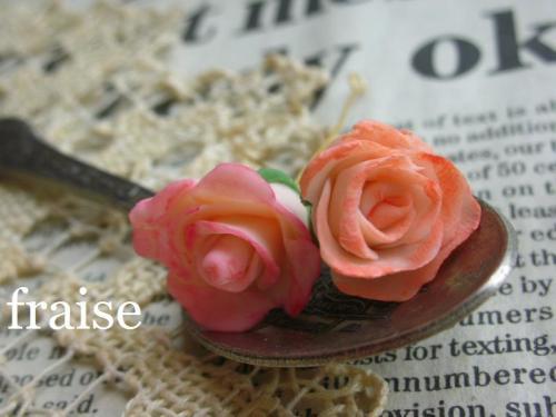 咲きかけのバラ3