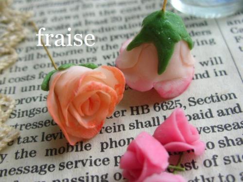 咲きかけのバラ2