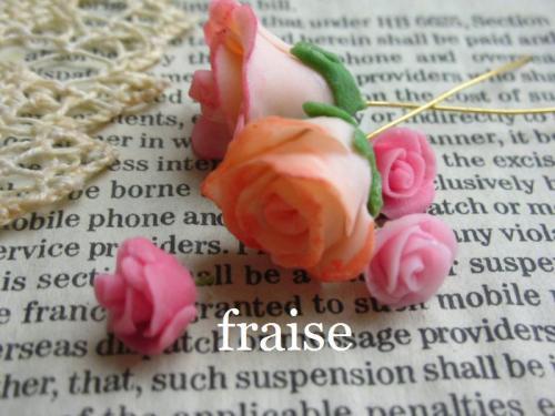 咲きかけのバラ1