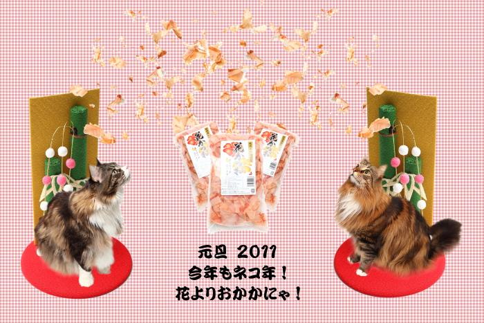 NewYear_2011.jpg