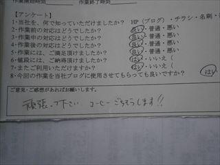 P3120311_R.jpg