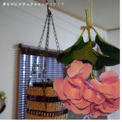 111_convert_20100506185821.jpg