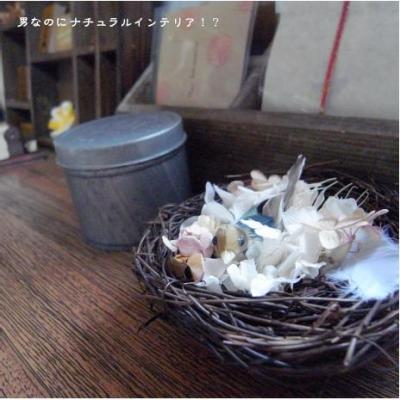 198_convert_20100619235943.jpg
