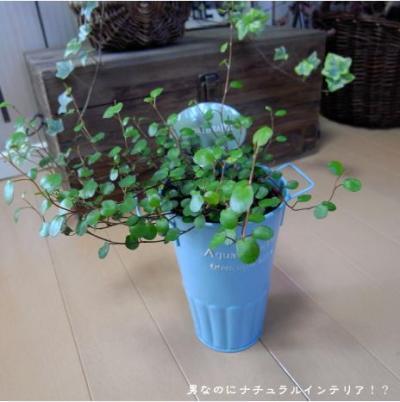 21_convert_20100318233128.jpg