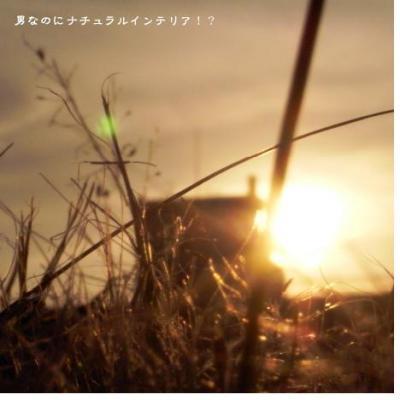 317_convert_20100219203853.jpg