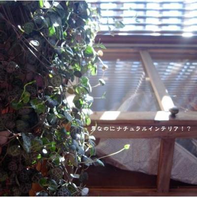 410_convert_20100926095408.jpg