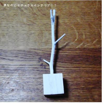 416_convert_20100928192252.jpg