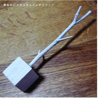 417_convert_20100928192308.jpg