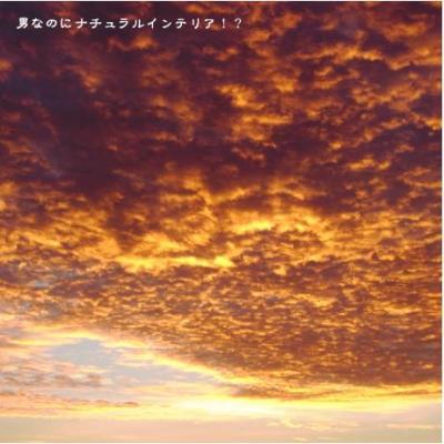 457_convert_20101015231414.jpg
