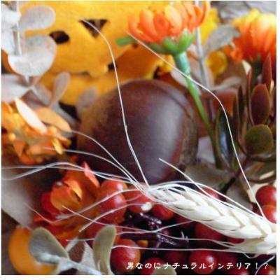 471_convert_20101021120714.jpg