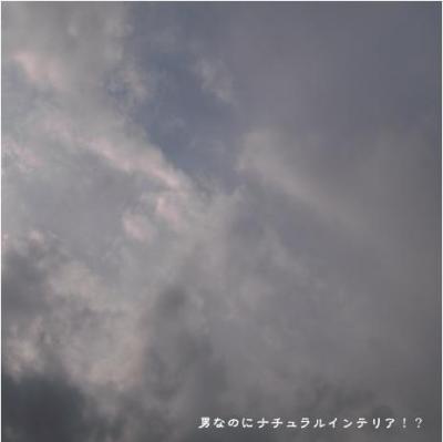 517_convert_20101104210607.jpg