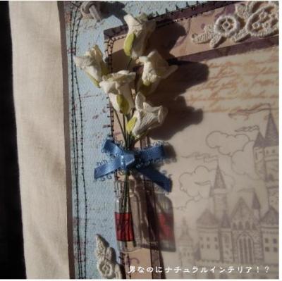 577_convert_20101123182500.jpg