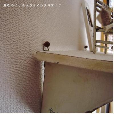 731_convert_20110103150909.jpg