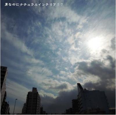 74_convert_20100417022749.jpg