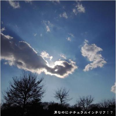 751_convert_20110113182620.jpg