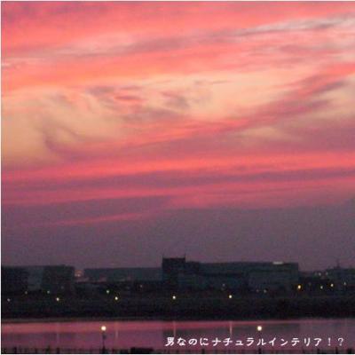 752_convert_20110113182642.jpg