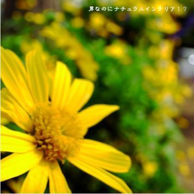 814_convert_20110129235943.jpg