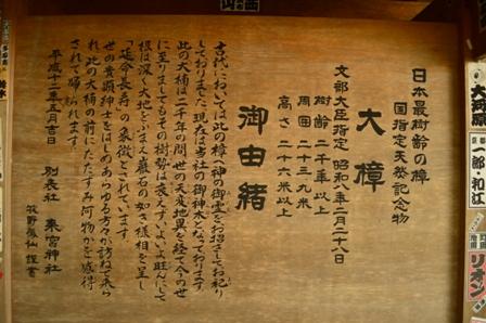 shimoda-7.jpg