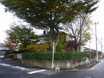 P1040485-yugami.jpg