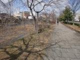 CIMG1394.jpg