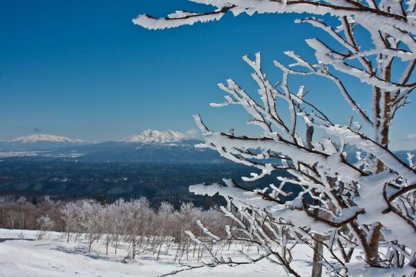 樹氷と斜里岳