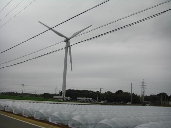 20141108銚子B (14)