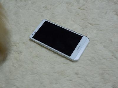 s-DSCN8990.jpg